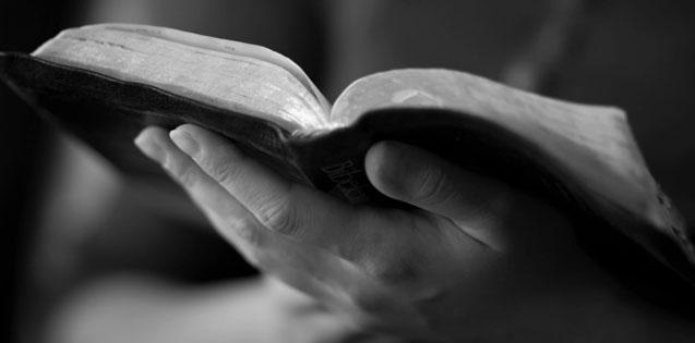 BIBLE-CROP.jpg